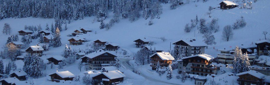Chalets Ecaille d'Argent et Fleurs des Alpes La Clusaz